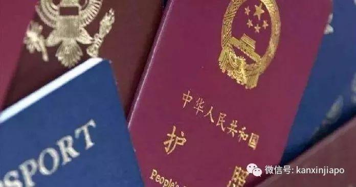 新加坡LTVP更换新护照