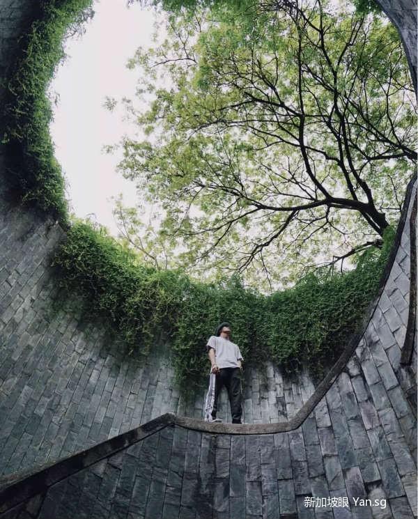 刷爆ins的新加坡网红拍照地