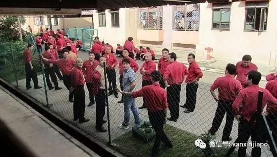 同为亚洲四小龙,新加坡到底有没有罢过工?