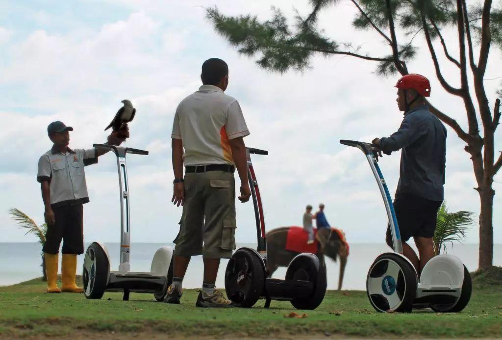 【2020新年】不容错过的早鸟特价,去新加坡后花园玩耍吧!