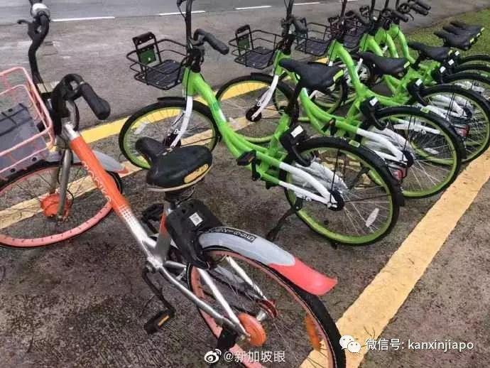 """小黄车和摩拜在新加坡""""消失后"""",共享单车市场出了这么多大事!"""