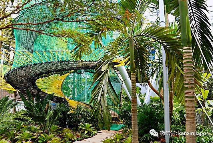 新加坡居然有上百个被人忽略的免费健身房!