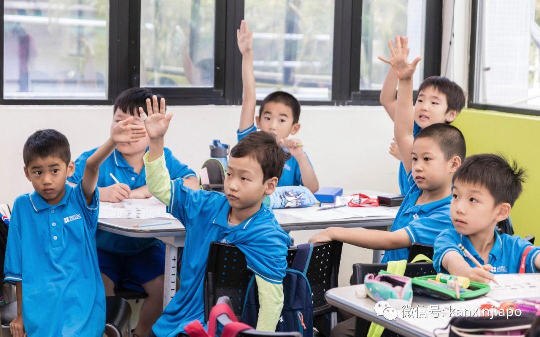 喜大普奔!能学又能玩的夏令营,新加坡全年都有