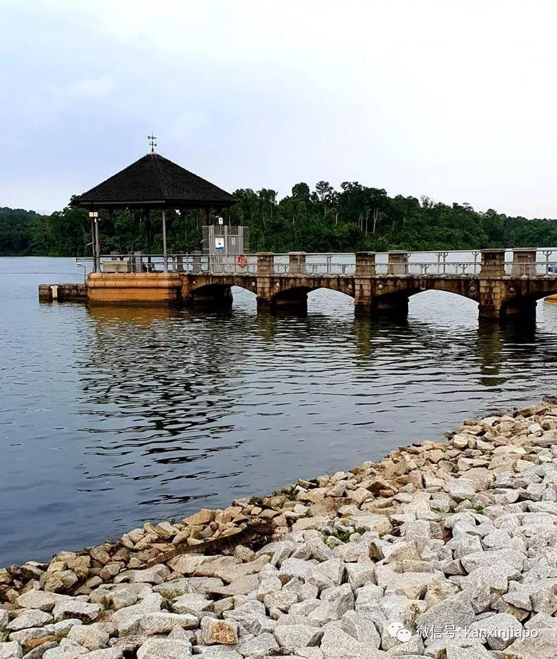 奇特生物出没?揭秘新加坡最古老的蓄水池