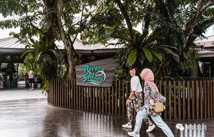 River Safari is now Disney Tsum Tsum-Themed