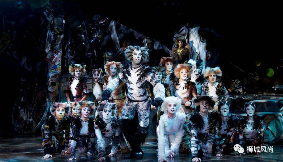 Cats The Musical Is Now In Singapore