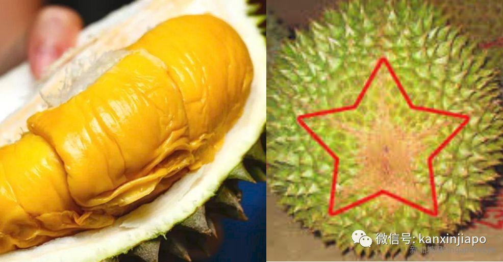 新加坡榴梿季到!不懂这些规矩,那你真是在瞎吃......